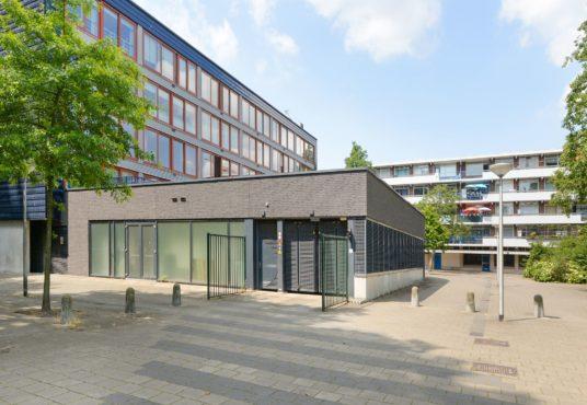 Artemissstraat/Papsouwselaan te Delft